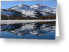 Snow Top Greeting Card by Michael Brown