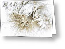 Snow Whiskers Greeting Card by Julie Palencia