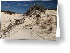 Snow White Dunes Greeting Card by Adam Jewell