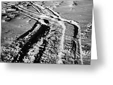 snowmobile tracks in snow across frozen field Canada Greeting Card by Joe Fox