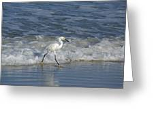 Snowy At The Beach Greeting Card by Patricia Twardzik