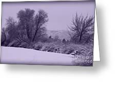 Snowy Bench in Purple Greeting Card by Carol Groenen