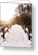 Snowy Bridge Greeting Card by Wim Lanclus