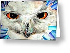 Snowy Owl - Female - Close Up Greeting Card by Daniel Janda