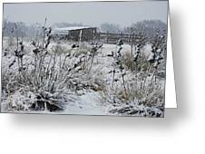 Snowy Pasture Greeting Card by Melany Sarafis