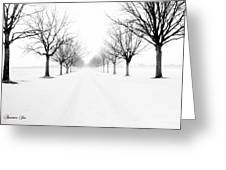 Snowy Path Greeting Card by Joe Russell