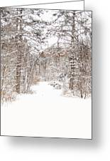 Snowy Path Greeting Card by Mary Timman