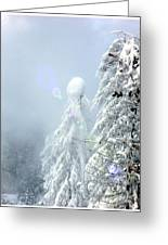 Snowy Trees Greeting Card by Kae Cheatham