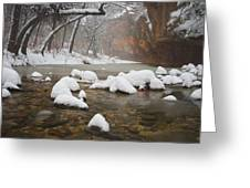 Snowy West Fork Greeting Card by Peter Coskun
