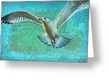 Soaring On Lifes Air Drafts Greeting Card by Deborah Benoit