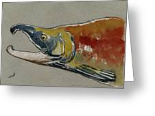 Sockeye Salmon Head Study Greeting Card by Juan  Bosco