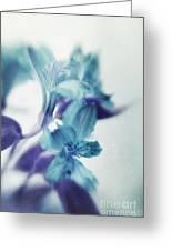 Soft Blues Greeting Card by Priska Wettstein