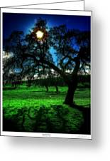 Solar-oak Eclipse Greeting Card by Lar Matre