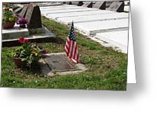 Soldiers Final Resting Place Greeting Card by Ron Roberts