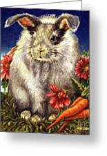 Some Bunny Is A Fuzzy Wuzzy Greeting Card by Linda Simon