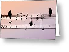 Songbirds Greeting Card by Bill Cannon