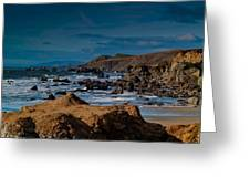 Sonoma Coast Greeting Card by Bill Gallagher