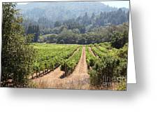 Sonoma Vineyards In The Sonoma California Wine Country 5d24515 Greeting Card by Wingsdomain Art and Photography