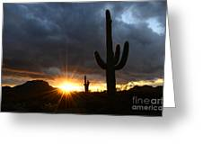 Sonoran Desert Rays Of Hope Greeting Card by Bob Christopher