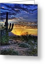 Sonoran Sunrise  Greeting Card by Saija  Lehtonen