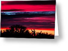 Sonoran Sunset Tucson Desert Greeting Card by Jon Van Gilder