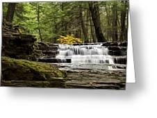 Soothing Waters Greeting Card by Christina Rollo
