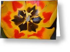 Soul Of A Tulip Greeting Card by Sonali Gangane