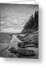 Soul Without Color Greeting Card by Jon Glaser