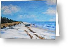 South Beach  Hilton Head Island Greeting Card by Stanton Allaben