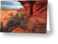 South Coyote Buttes Grand View Greeting Card by Inge Johnsson