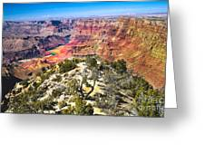 South Rim From The Butte Greeting Card by Robert Bales