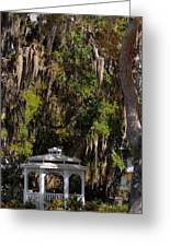 Southern Gothic In Mount Dora Florida Greeting Card by Christine Till