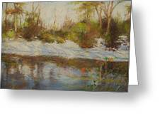 Southern Landscapes   Greeting Card by Nancy Stutes