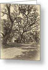 Southern Lane Sepia Greeting Card by Steve Harrington