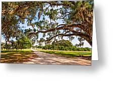Southern Serenity Greeting Card by Steve Harrington