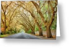 Spanish Moss - Symbol Of The South Greeting Card by Christine Till