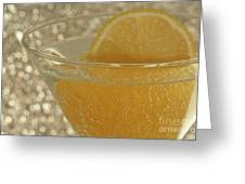 Sparkling Citrus Moments Greeting Card by Inspired Nature Photography By Shelley Myke