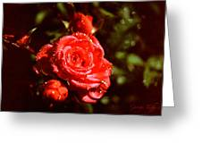 Sparkling Greeting Card by George Tuffy
