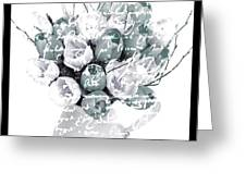 Speak Softly Tulips Greeting Card by Debra  Miller