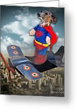 Speedolini Flying High Greeting Card by Kathy Tarochione