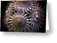 Spiny Beauty Greeting Card by Julie  Grace