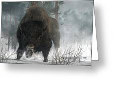 Spirit Of Winter Greeting Card by Daniel Eskridge