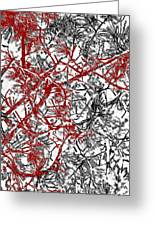 Splash Of Red Greeting Card by Gwyn Newcombe