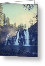 Splendor Greeting Card by Laurie Search