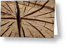 Split Wood Greeting Card by Art Block Collections