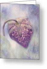 Spotted Beauty Greeting Card by Faith Simbeck