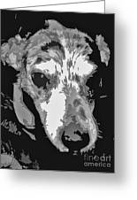 Spotted Dog Black And White Greeting Card by Minding My  Visions by Adri and Ray