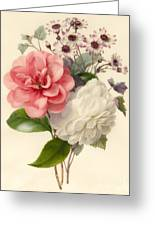 Spray Of Three Flowers Greeting Card by Marie Anne