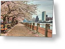 Spring along the East River Greeting Card by JC Findley