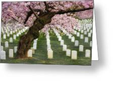 Spring Arives At Arlington National Cemetery Greeting Card by Susan Candelario